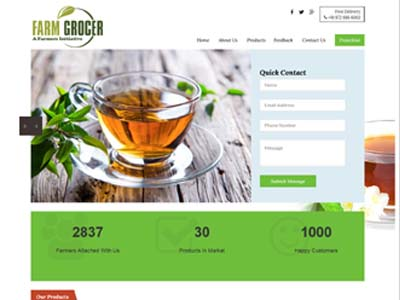 low cost website design company